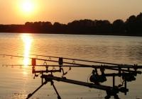 Angelruten am See bei Abenddämmerung